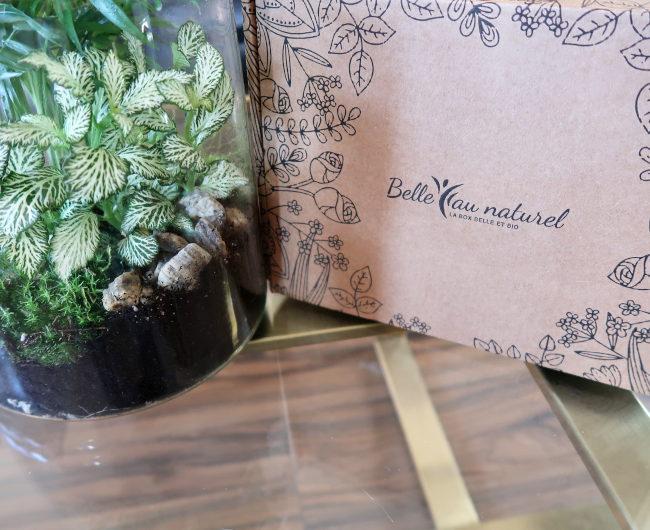 box renaissance printanière belle au naturel